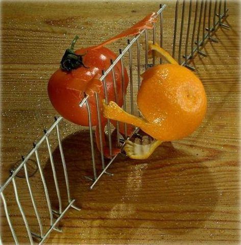 grapefruits-rosii