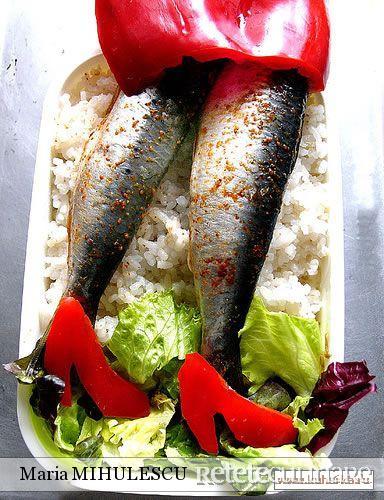 fishutza3