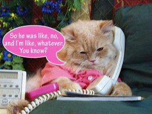 cat-phone