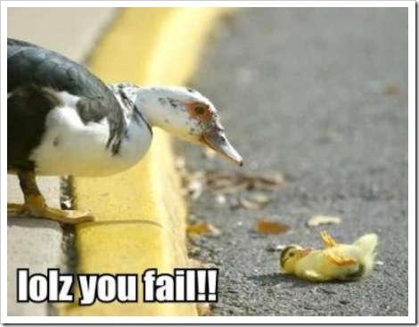 http://grapefruits.files.wordpress.com/2009/09/fail-duck22.jpg