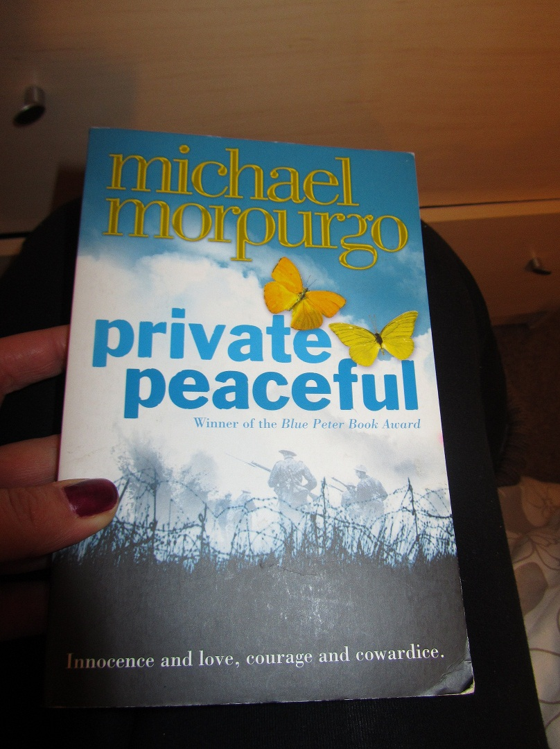 private peaceful essay private peaceful essay questions pevita